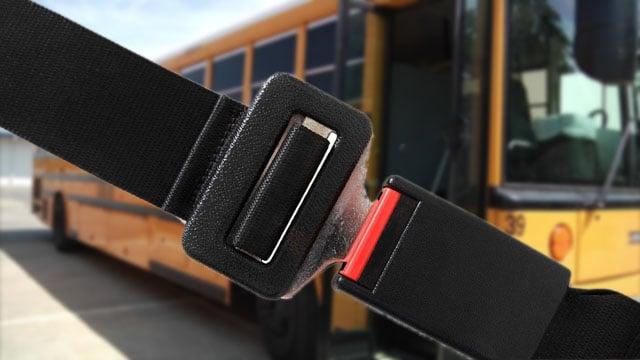 (Seat Belt Solutions/KTEN)