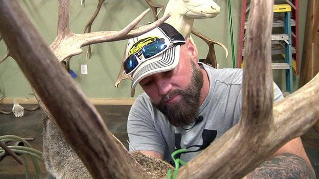 Texas taxidermist Roy McCraw at work. (KTEN)