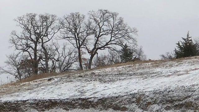 Light snow dusted a hillside in Denison on Sunday morning. (KTEN)
