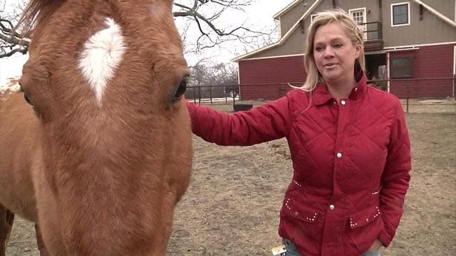 """I don't feel like my animals are safe anymore,"" Fannin County ranch owner Karla Schmidt said. (KTEN)"