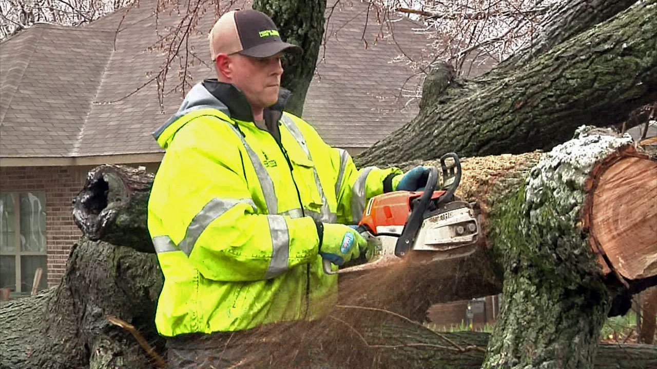 Workers dealt with trees and limbs toppled by the ice storm in Grayson County. (KTEN)