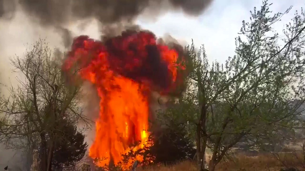 A wildfire near Vici, Oklahoma, consumes a tree on April 13, 2018. (KOKH via CNN)
