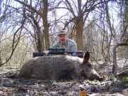 750 Pound wild hog killed in Bryan County, OK (Photo submitted by Mark Swearengin, Durant, OK)