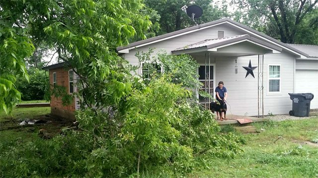 Trees down in Stonewall, Oklahoma.