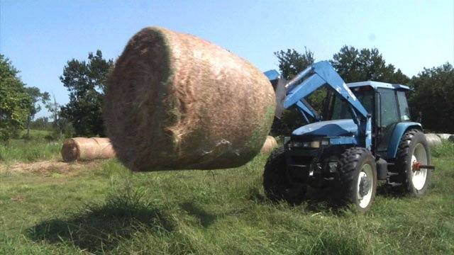 Hay drive for Harvey