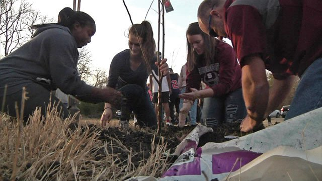 Family and friends of Gerald Plumlee planted trees in his memory. (KTEN)