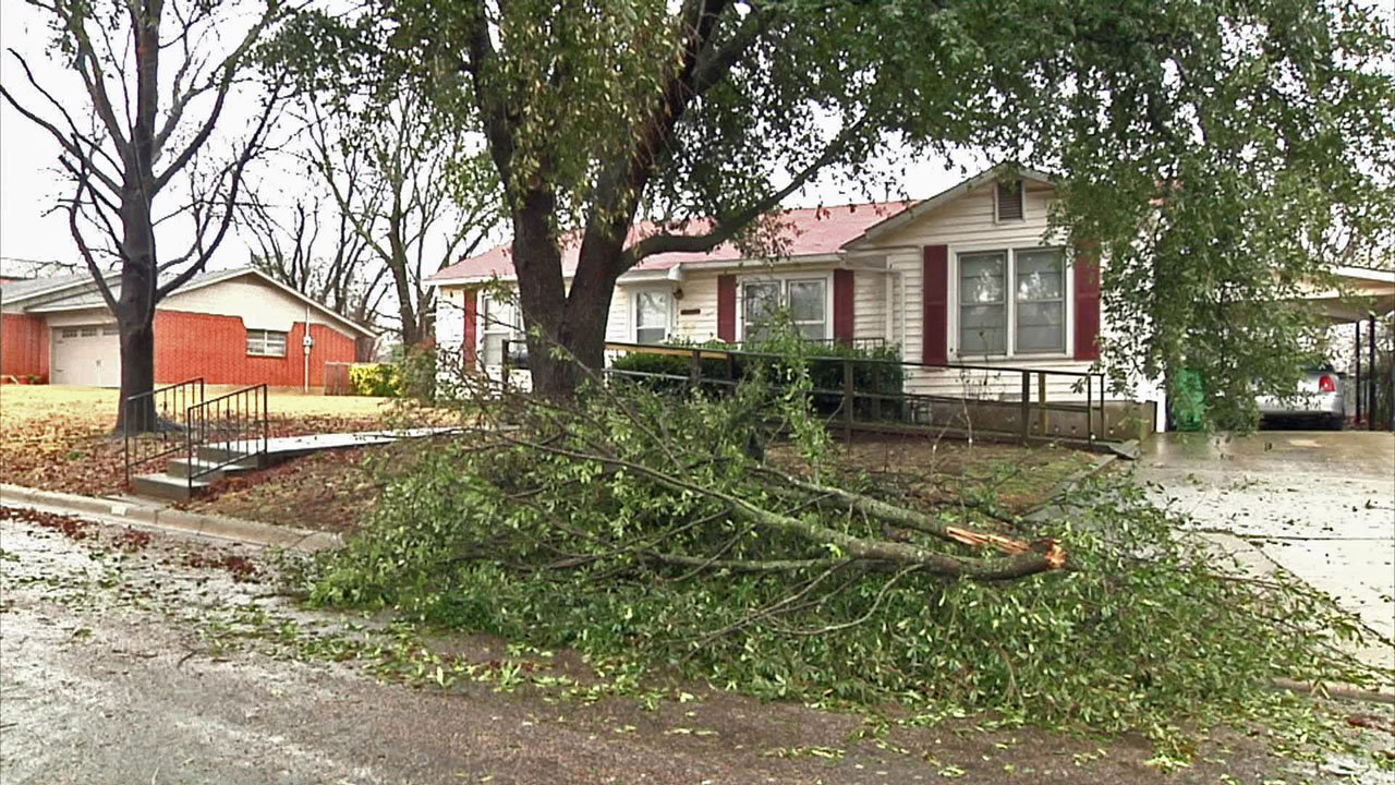 The ice storm stripped tree limbs across Whitesboro. (KTEN)