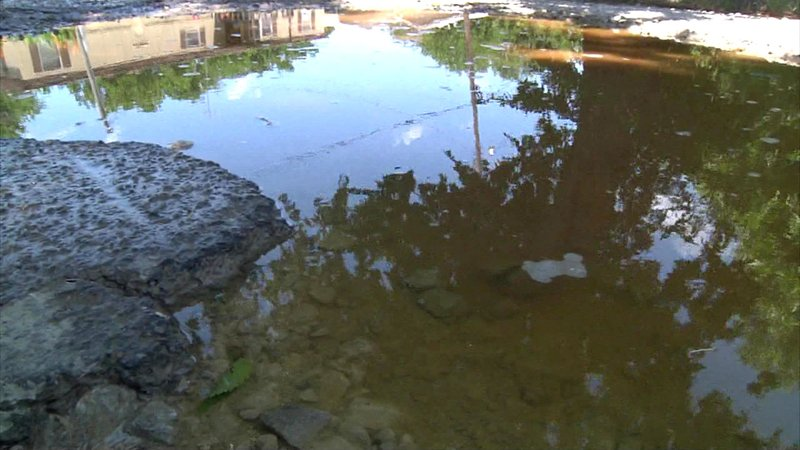 Standing water is a breeding ground for mosquitoes. (KTEN)