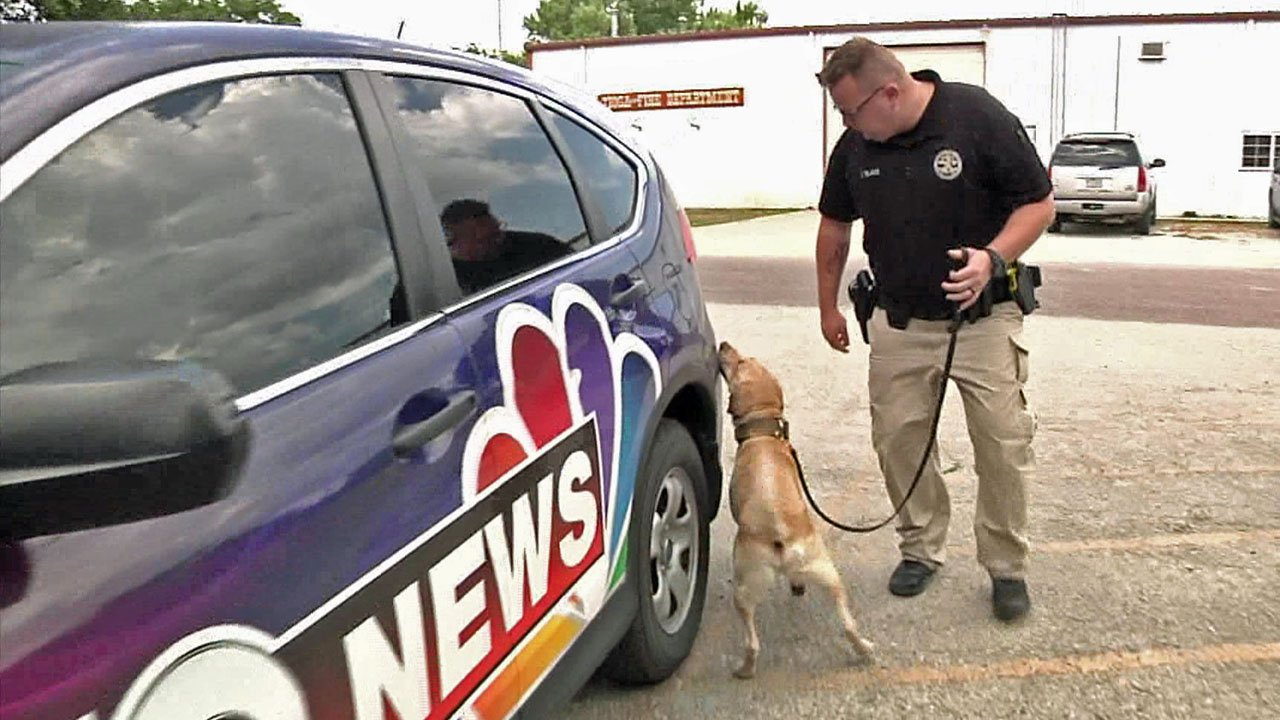 Duke checks a KTEN news vehicle for the scent of illegal drugs. (KTEN)