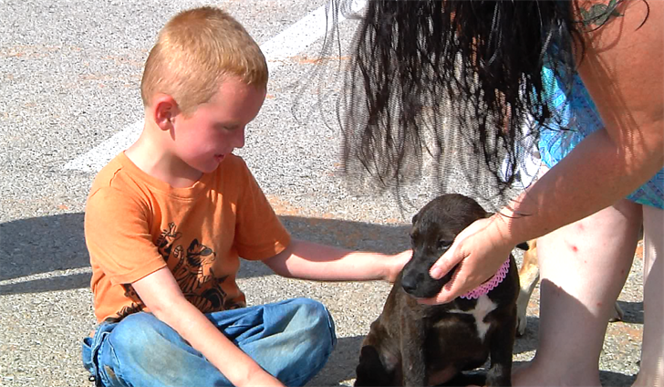 Atoka boy gets new service dog