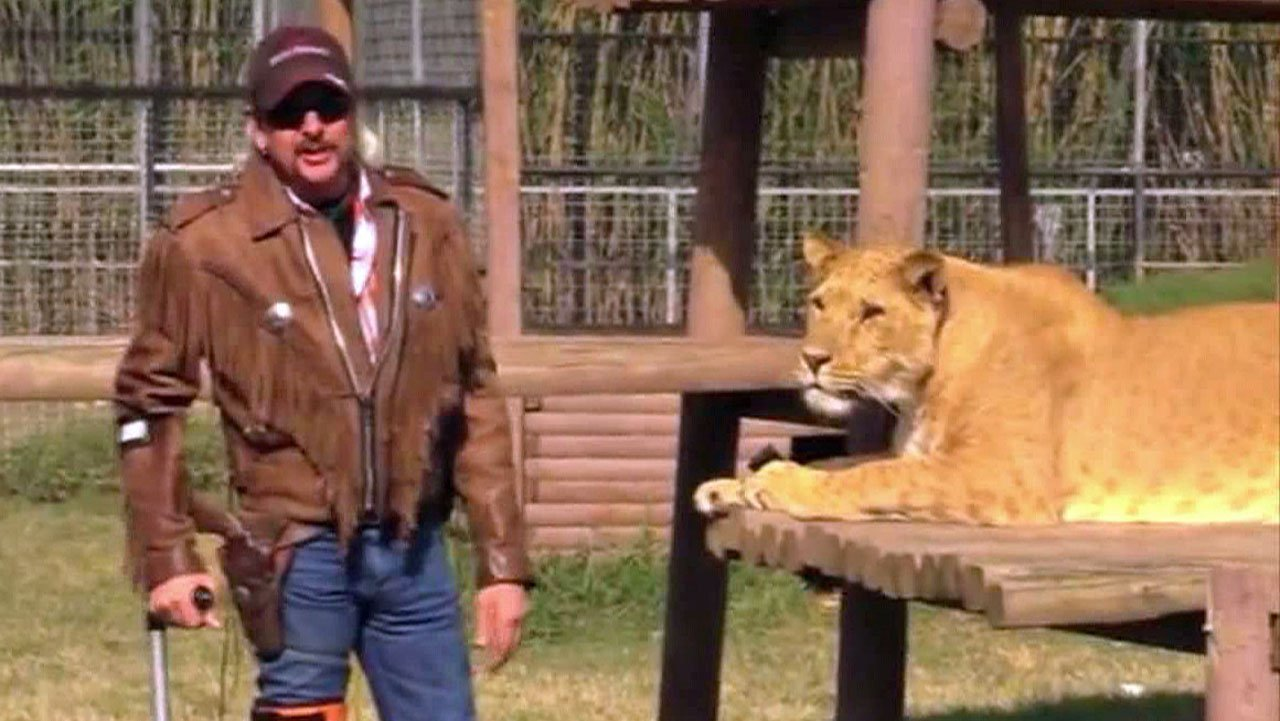 "Joe ""Joe Exotic"" Maldonado-Passage with a tiger at the Greater Wynnewood Exotic Animal Park. (File/KTEN)"