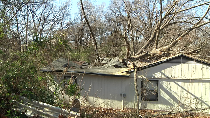 A Friday night storm causes a tree to fall on a Tishomingo home (KTEN)