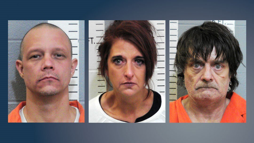 David Stanford Jr., Hallie Cole and Joseph Villemarette were arrested on drug charges. (Carter County Sheriff)