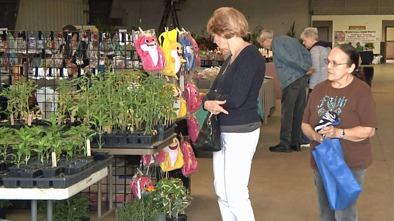 Visitors browse at the 2019 Texoma Garden Show in Durant. (KTEN)