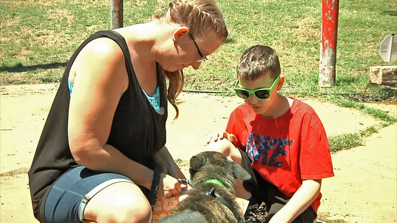 The Denison Animal Welfare Group has a program for individuals to provide a day of foster care for a dog. (KTEN)