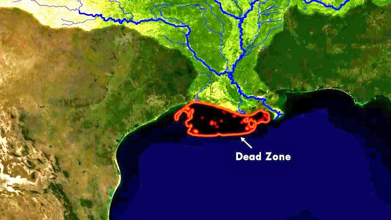 """The extent of the Gulf of Mexico's """"dead zone."""" (Courtesy NOAA NESDIS)"""