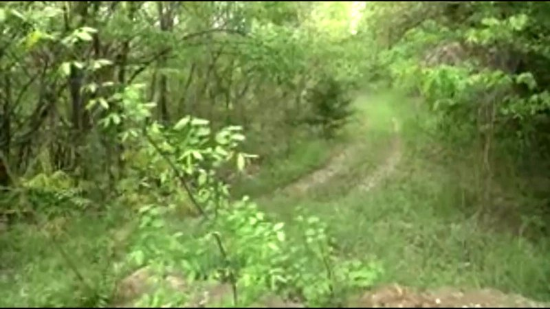Denison's Katy Trail will be constructed along an abandoned railroad right-of-way. (KTEN)