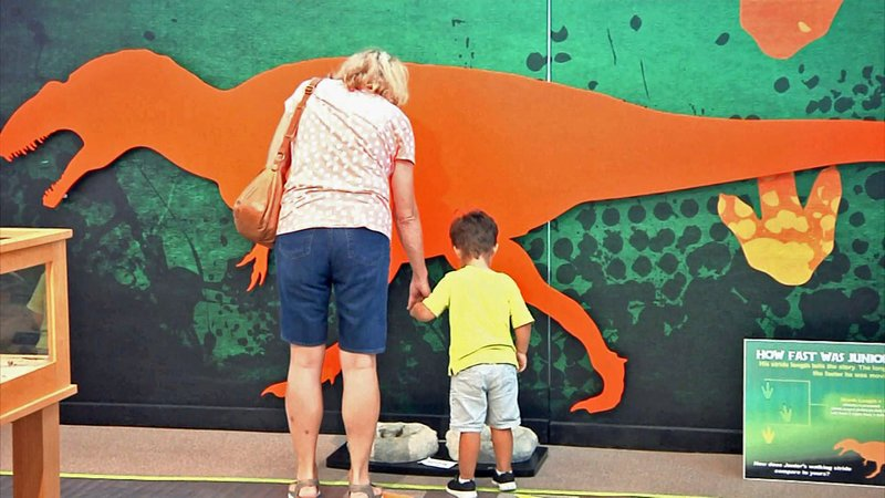Dino Days features informative exhibits for young and old visitors to The Sherman Museum. (KTEN)