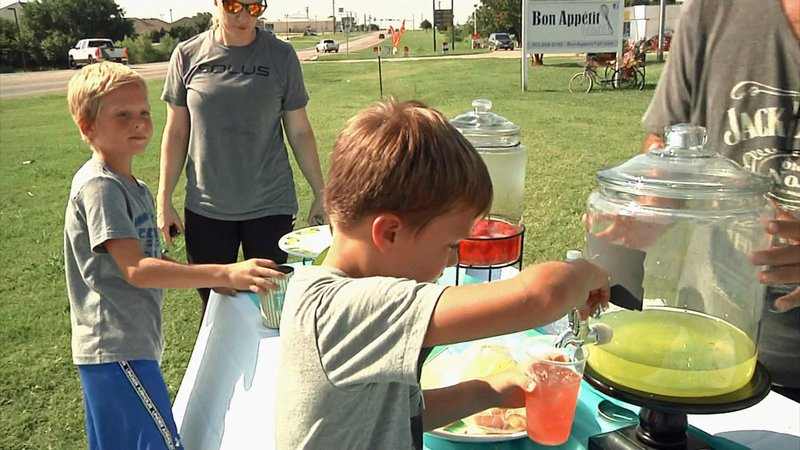 Donations collected by Hollis and Slade Prock at their Sherman lemonade stand will go to animal rescue groups across Texoma. (KTEN)