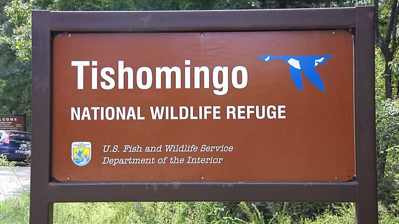 Expanded hunting options will soon be available at the Tishomingo National Wildlife Refuge. (KTEN)