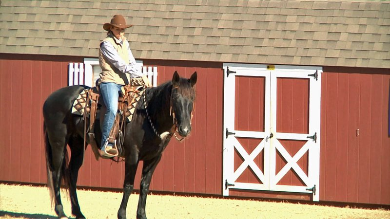 Riders competed in the Ranch Horse Buckle Series in Ardmore. (KTEN)