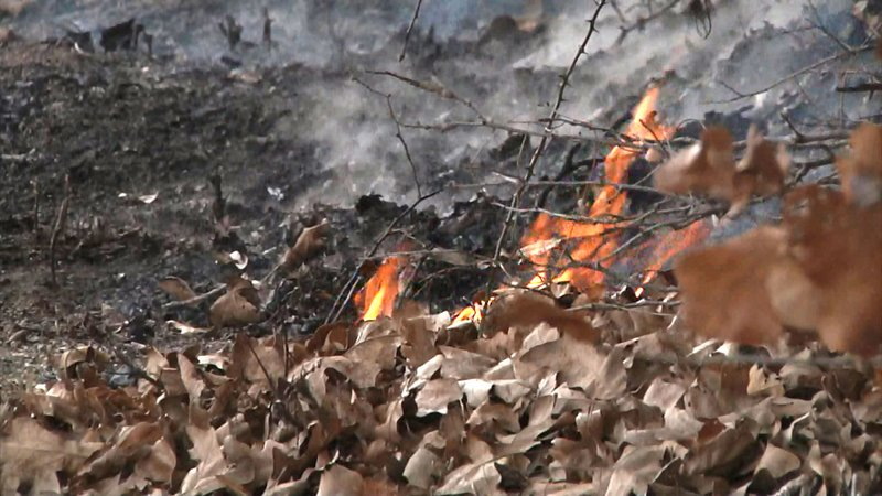 Tinder-dry conditions increase the wildfire threat across Texoma. (KTEN)