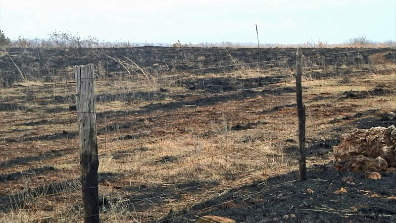 Arsonists are believed to be responsible for grass fires that have blackened hundreds of acres in Pontotoc County. (KTEN)