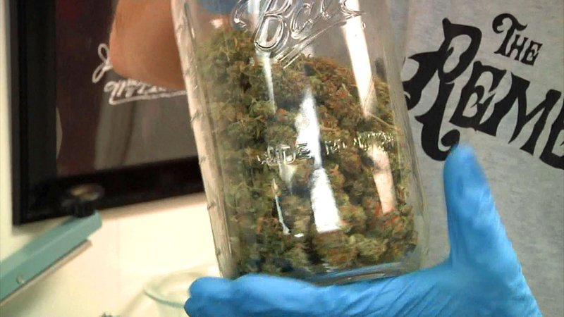 Medical marijuana sales generated record tax revenue in Oklahoma. (KTEN)