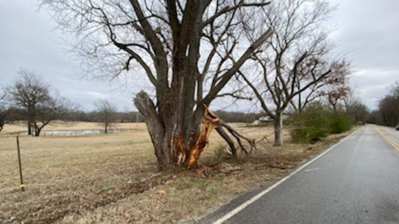 Deputy Jarid Taylor died after his vehicle struck a tree along Old Highway 70 east of Durant on January 14, 2020. (KTEN)